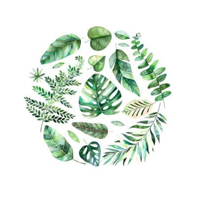 Tierliebe, Garten- und Pflanzenglück
