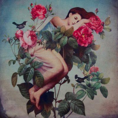 FLOWERDREAM - Blütentraum