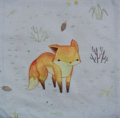 LITTLE FOX - Kleiner Fuchs