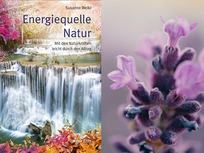 Buch-Tipp: Energiequelle Natur